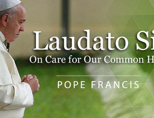 Church celebrates 5th Anniversary of Laudato Si'