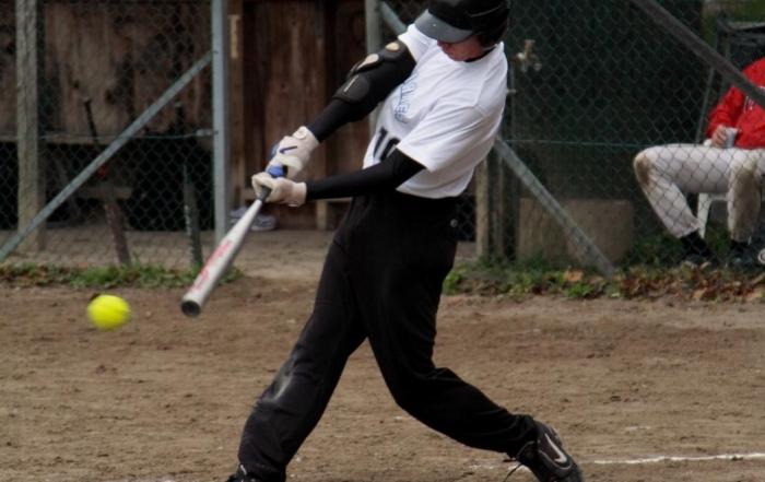 Softball_batter_vh